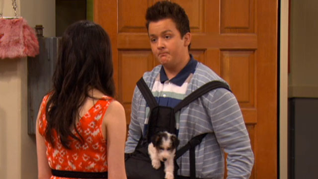 what happened to sam and freddie dating Icarly - iomg - what happens next • will freddie somehow end up dating but get ready to see what does happen after the sam-freddie.